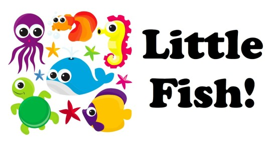 Little Fish Banner